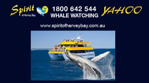 Spirit of Hervey Bay